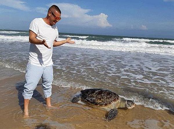 Nhiều người dân, du khách đau xót khi thấy rùa biển chết