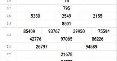 Tổng hợp nhận định xổ số bình định ngày 10/12/2020