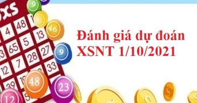 Đánh giá dự đoán XSNT 1/10/2021